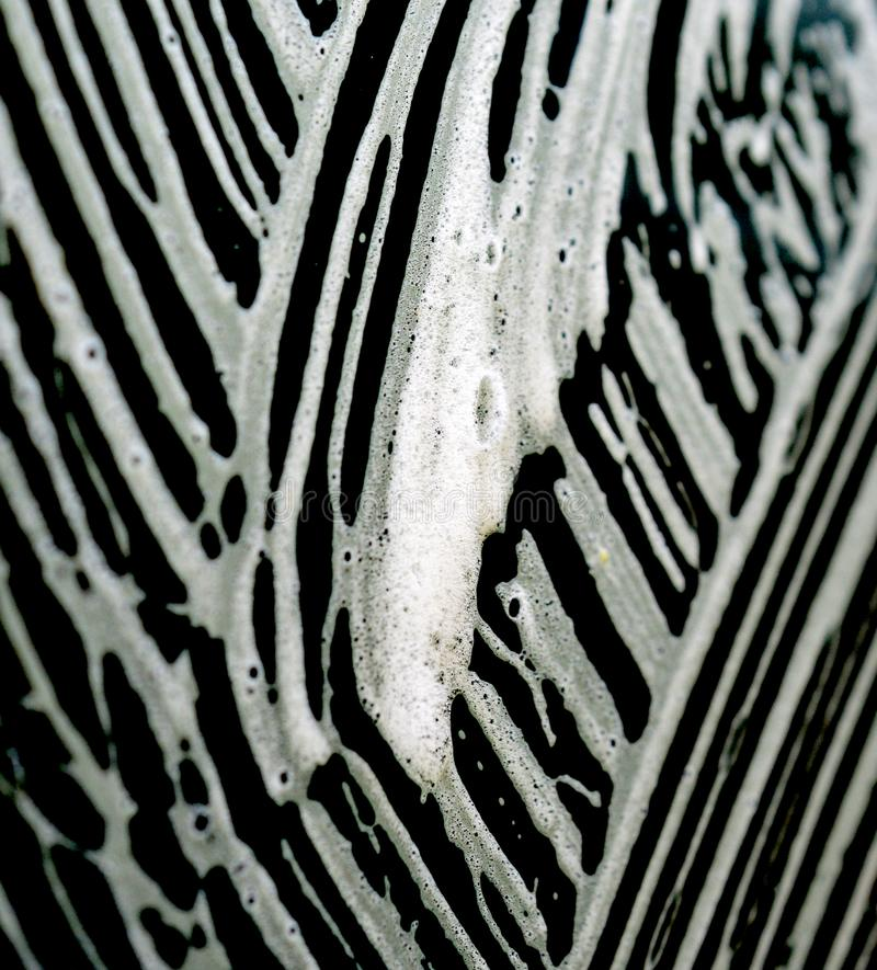 car wash foam patterns on a car window stock images