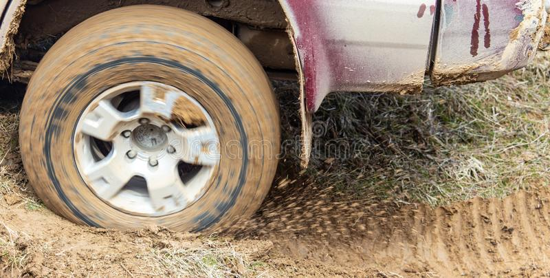 Car wheel slips in the dirt in nature.  royalty free stock images