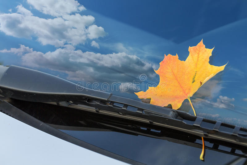 Car windshield. Autumn leaf on a car windshield stock image