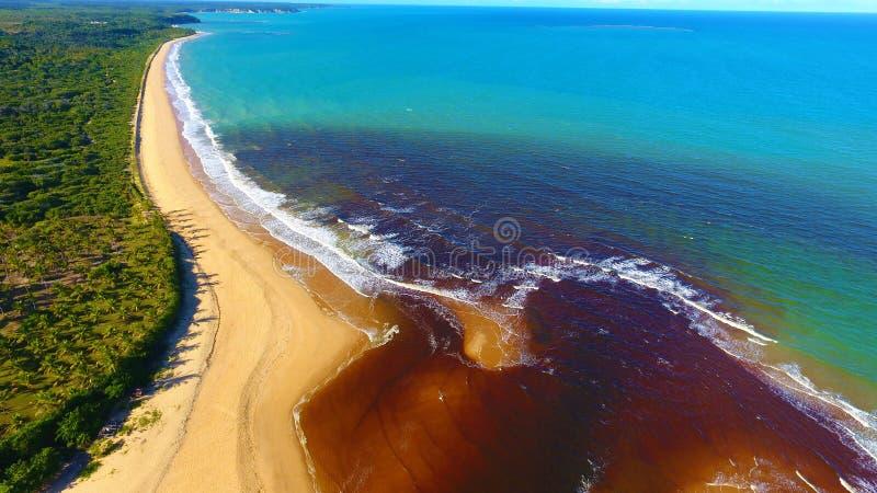 CaraÃva, Bahia, Βραζιλία: Άποψη της όμορφης παραλίας με δύο χρώματα του νερού στοκ εικόνα