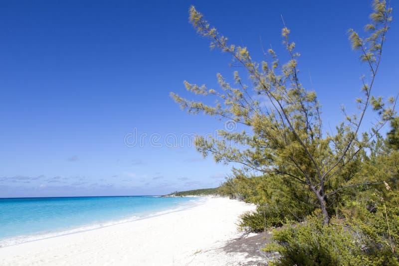 Caraïbisch Eilandlandschap stock foto's