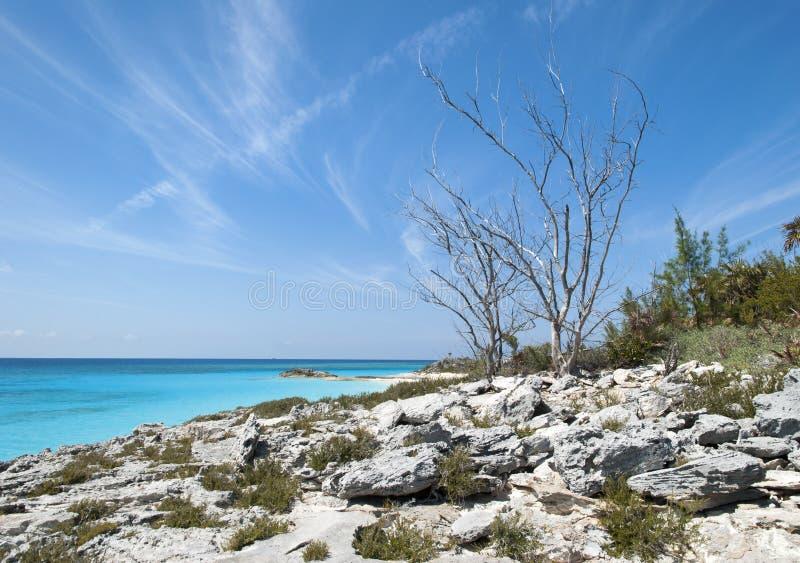 Caraïbisch Eilandlandschap royalty-vrije stock foto