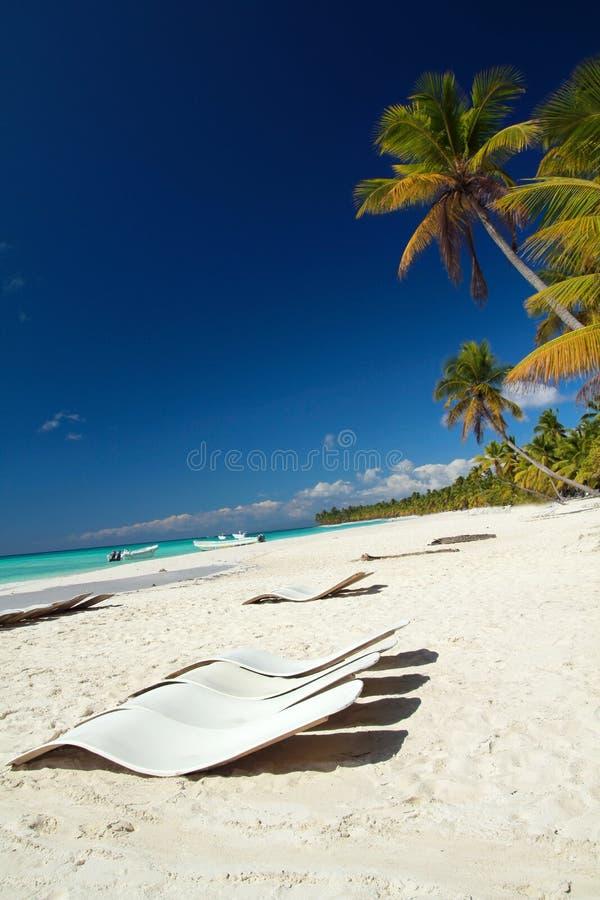 Caraïbisch paradijs stock foto's