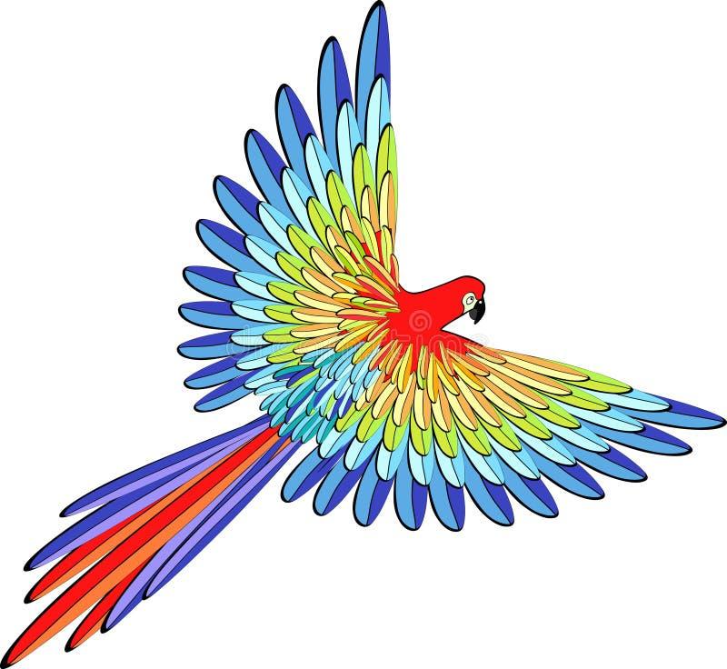 Caraïbisch rood papegaai het vliegen Vector illustratie vector illustratie