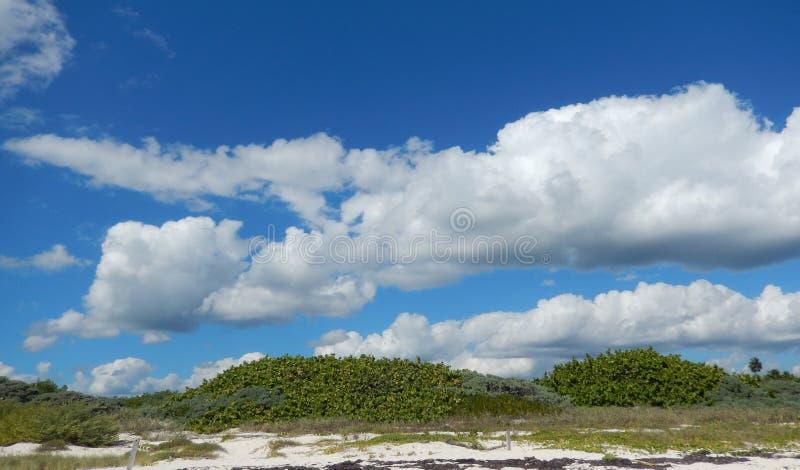 Caraïbisch strand in de Atlantische Oceaan in Cancun, Mexico stock afbeeldingen
