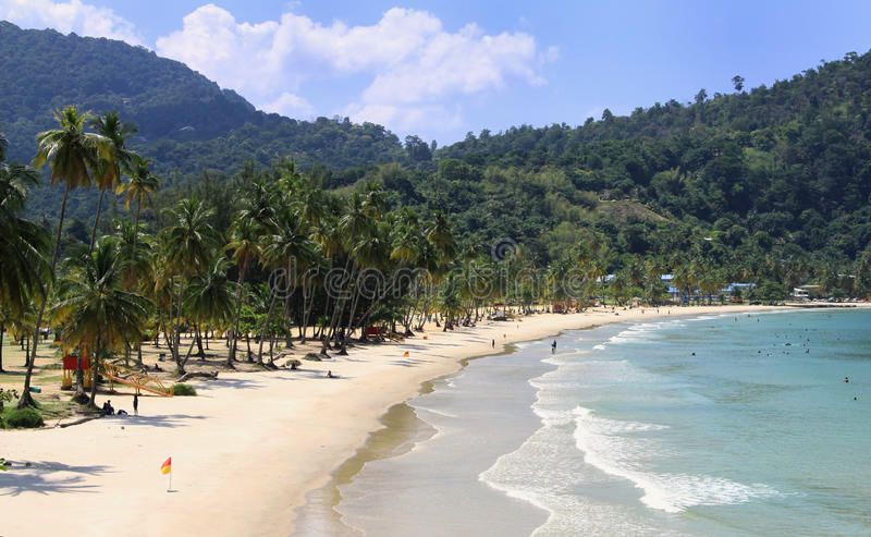 Caraïbisch Strand - Trinidad 01 royalty-vrije stock fotografie