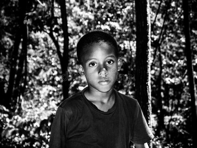 Caraïbische jongen in het hout stock foto