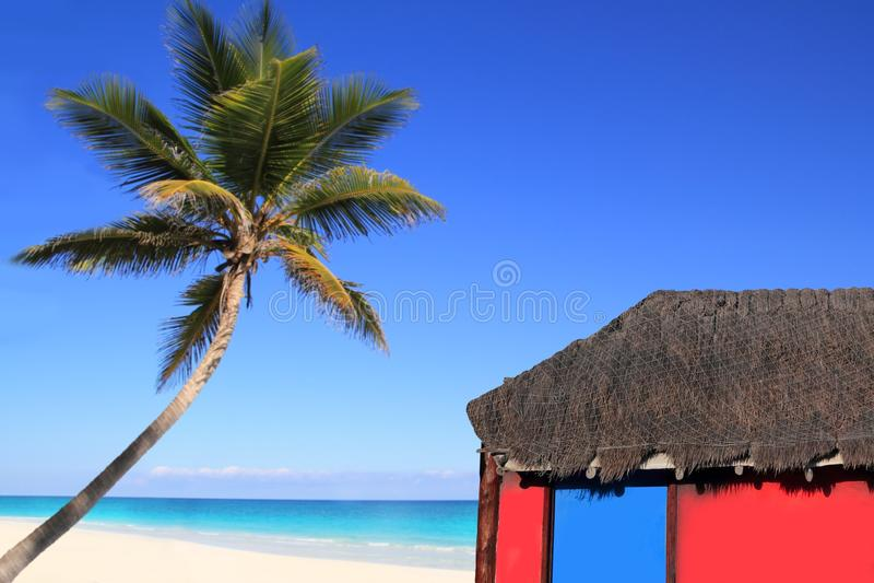 Caraïbische kokosnotenpalm en rode hutcabine stock fotografie