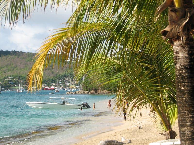 Caraïbische overzees royalty-vrije stock foto's