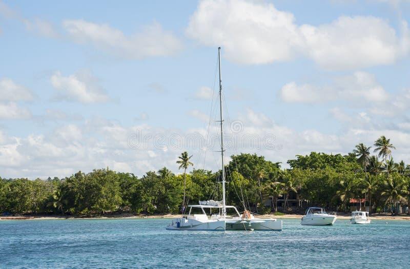 Caraïbische overzees met turkoois water en palmen dicht bij Saona-eiland royalty-vrije stock foto