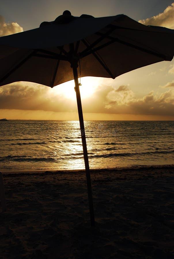 Caraïbische Paraplu stock fotografie