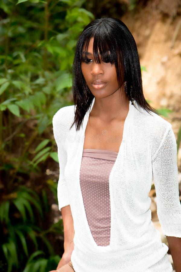 Caraïbische pop stock afbeeldingen