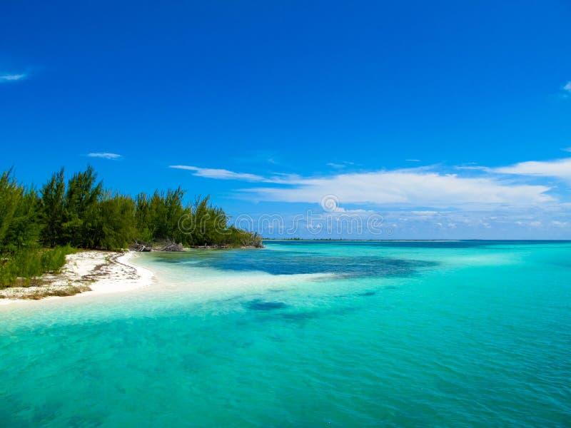 Caraïbische Zee - Playa Paraiso, Largo Cayo, Cuba royalty-vrije stock foto