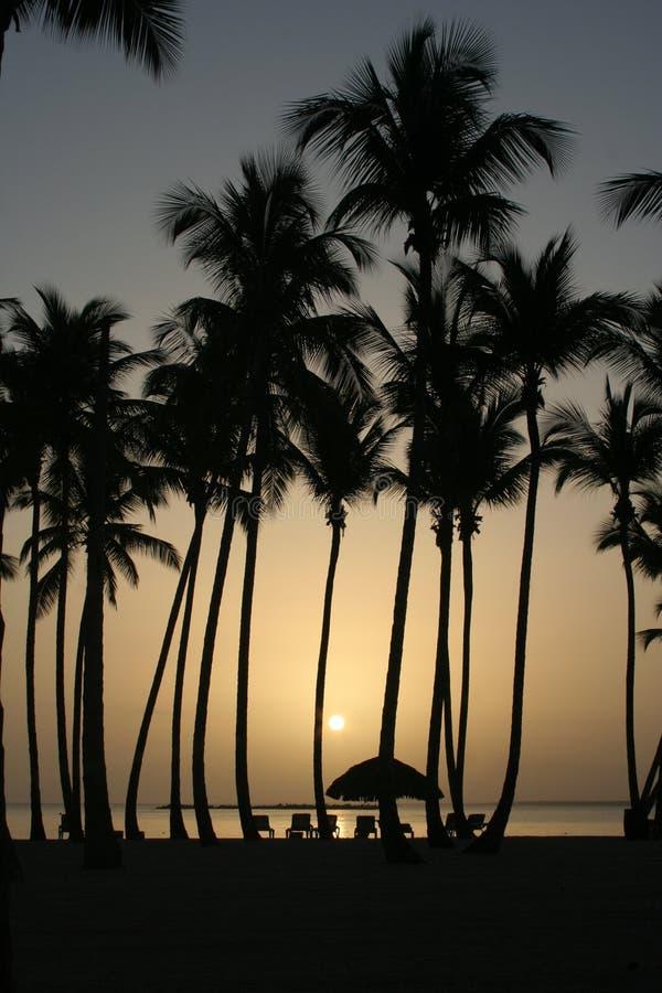 Caraïbische zonsondergang stock foto's