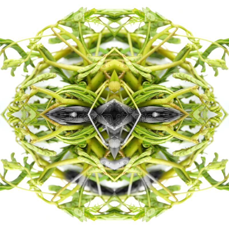 Cara amistosa abstracta del monstruo de la textura verde de las verduras Conceptos de mal bueno-hearted, diablo, viernes el décim imagenes de archivo