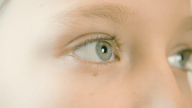 Cara ascendente cercana de la muchacha del adolescente que mira y que guiña Cara y chica joven de los ojos foto de archivo