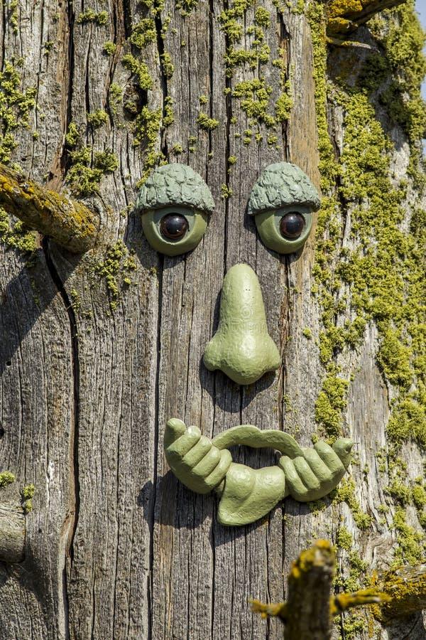 Cara cômico na árvore velha imagens de stock royalty free