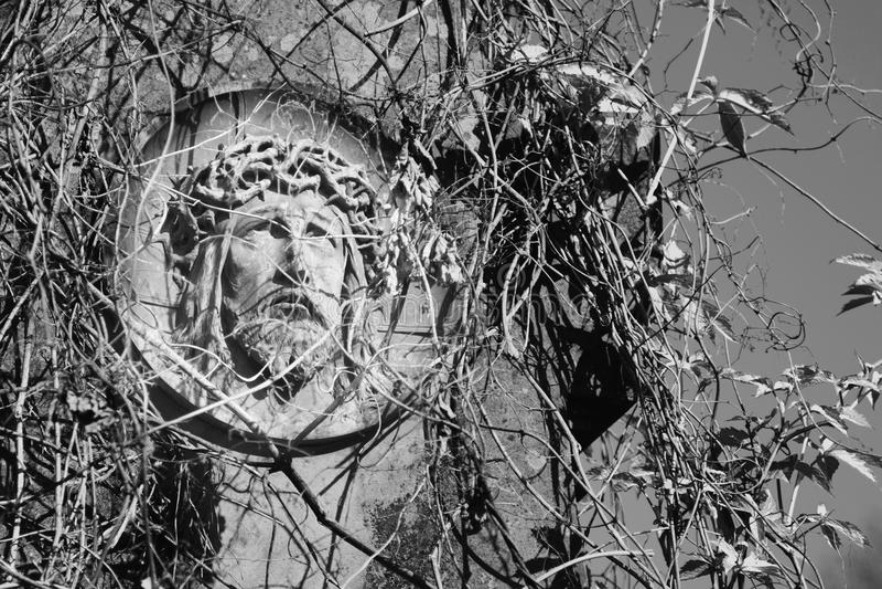 Cara da coroa de Jesus Christ da estátua dos espinhos foto de stock royalty free