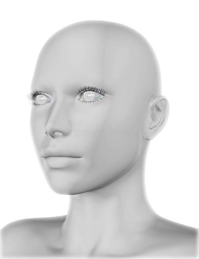 cara da fêmea 3D ilustração stock