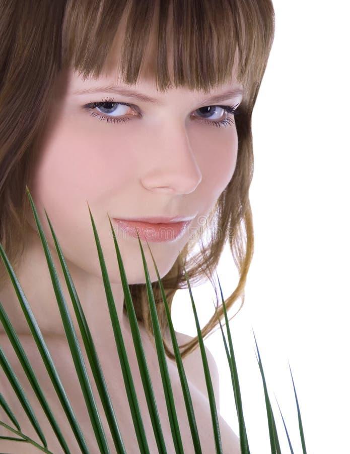 cara da mulher que esconde atrás da folha de palmeira verde grande fotografia de stock