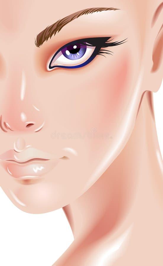 Cara de la mujer hermosa stock de ilustración