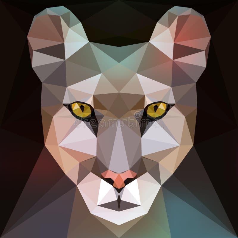 Cara de um puma (puma) ilustração stock