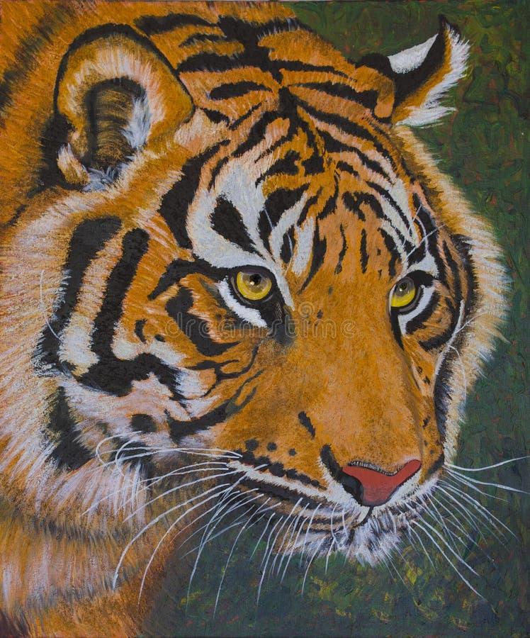 Cara de um tigre ilustração do vetor