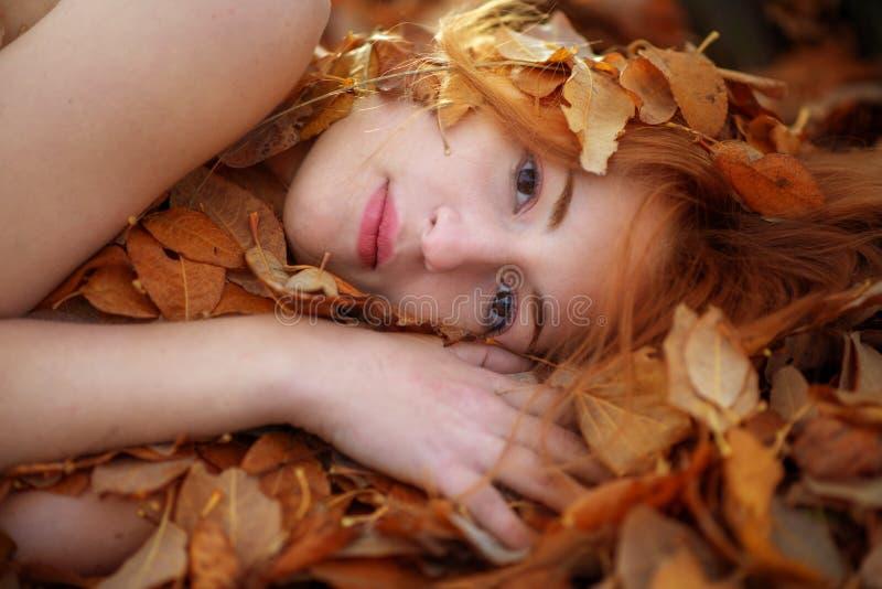 Cara de uma jovem mulher entre a folha dourada vermelha foto de stock royalty free