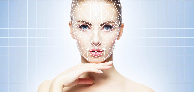 Cara de una muchacha del beautifyl con una rejilla scnanning en su cara Identificaci?n de la cara, seguridad, reconocimiento faci imágenes de archivo libres de regalías