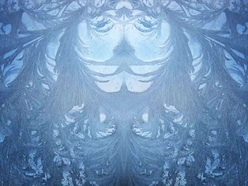Cara del invierno fotografía de archivo