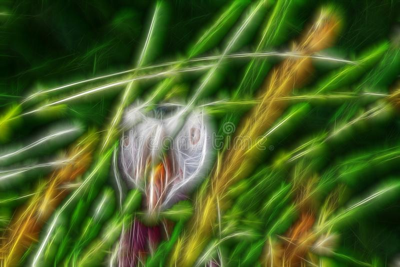 cara del pájaro detrás de la pared de la hierba, retrato extraño stock de ilustración