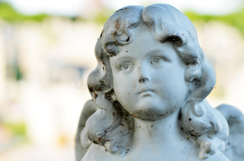 Cara do anjo foto de stock