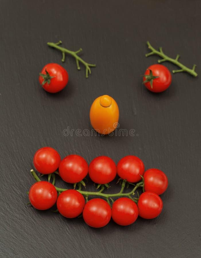 Cara do smiley com uma expressão observador Apresentando partes de um rosto humano com vegetais, a saber tomates e ramos do tomat fotos de stock royalty free