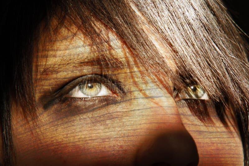 Cara en la madera - facewood; look ahead hermoso del ojo imagenes de archivo