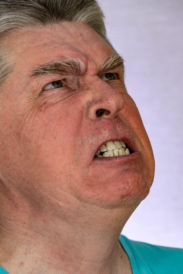Cara, express?es faciais, sentimentos, emo??es, autorretrato imagens de stock royalty free