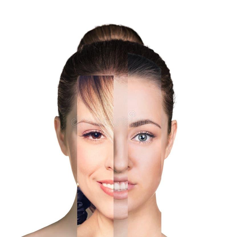 Cara fêmea humana feita de diversa parte diferente fotografia de stock