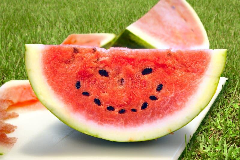 Cara feliz del verano foto de archivo