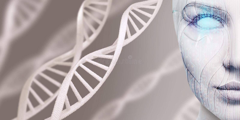 Cara femenina del cyborg hermoso entre troncos de la DNA fotos de archivo