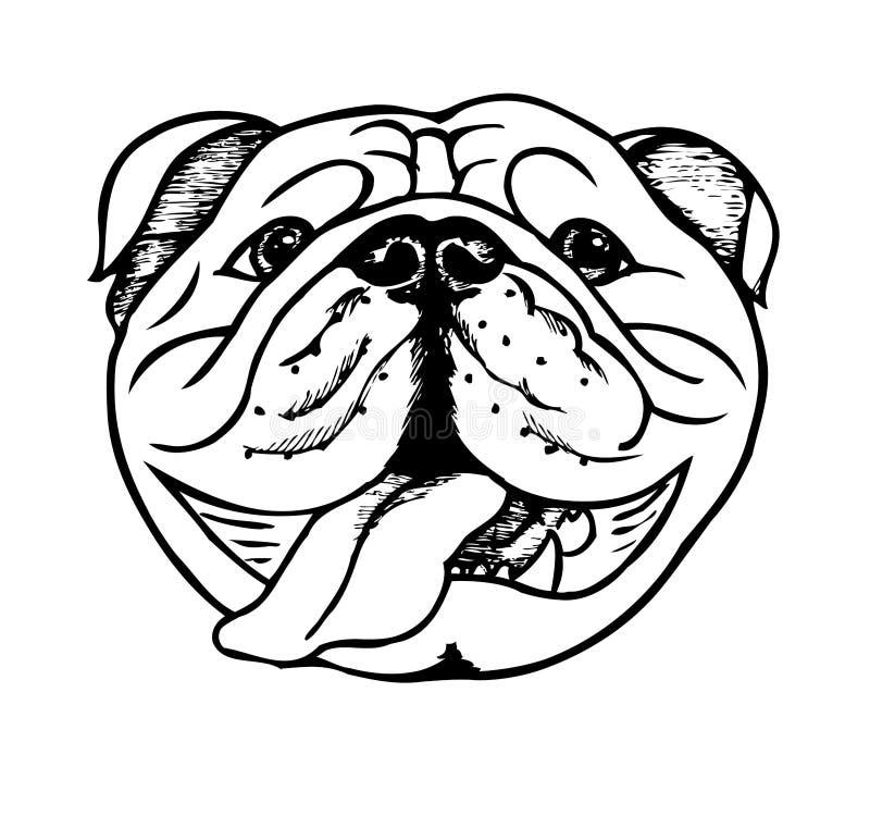 Cara inglesa del dogo ilustración del vector