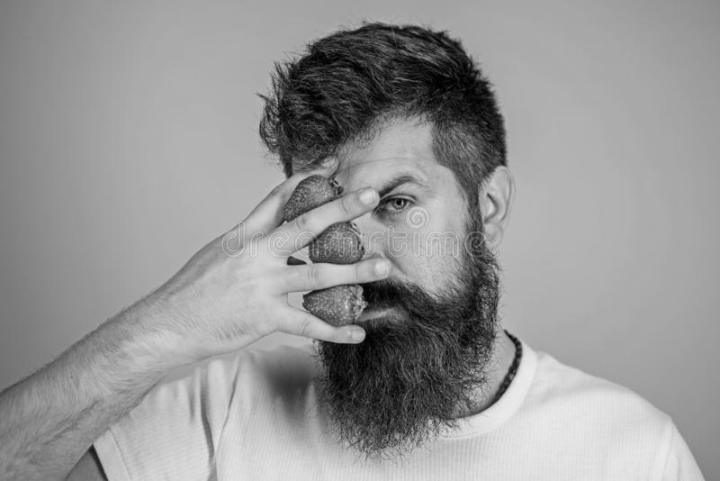 A cara pensativa do bigode da barba do moderno pensa bagas A m?o farpada da posse do moderno do homem com morangos aproxima a car foto de stock royalty free
