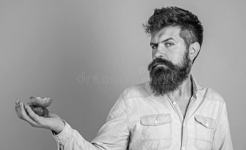 A cara restrita do homem com barba oferece deleites org?nicos Eu tenho deleites para voc? Morangos e ma?? farpadas das posses do  fotografia de stock royalty free