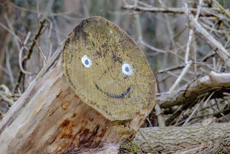 Cara sonriente en registros imágenes de archivo libres de regalías
