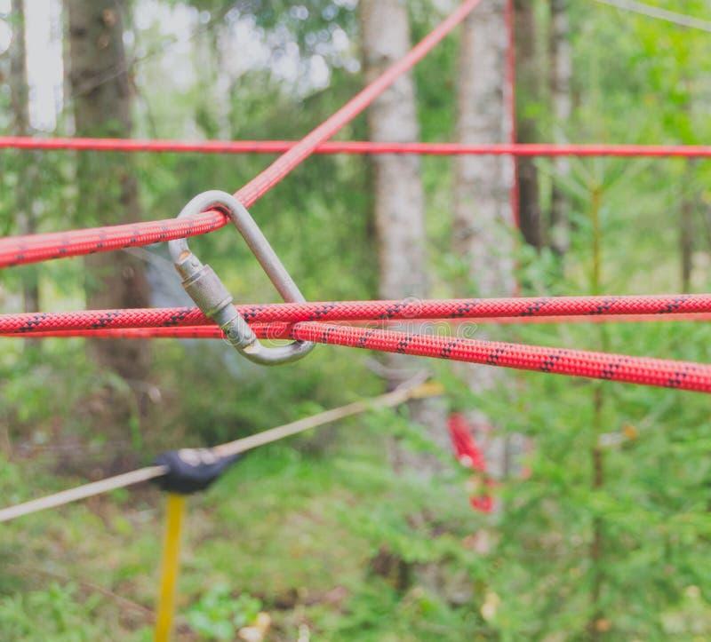 Download Carabiner Relie La Corde Au Prise Dans Une Forêt Photo stock - Image du matériel, criqué: 76080262