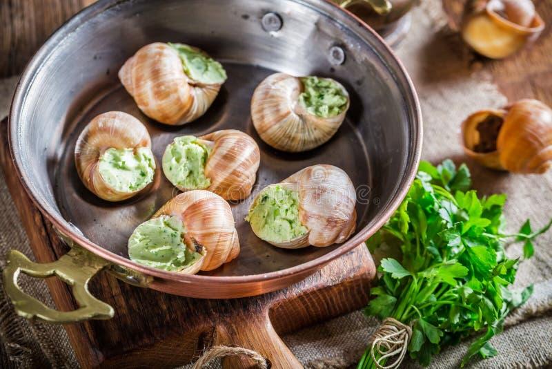 Caracóis deliciosos com hebrs e manteiga de alho imagem de stock