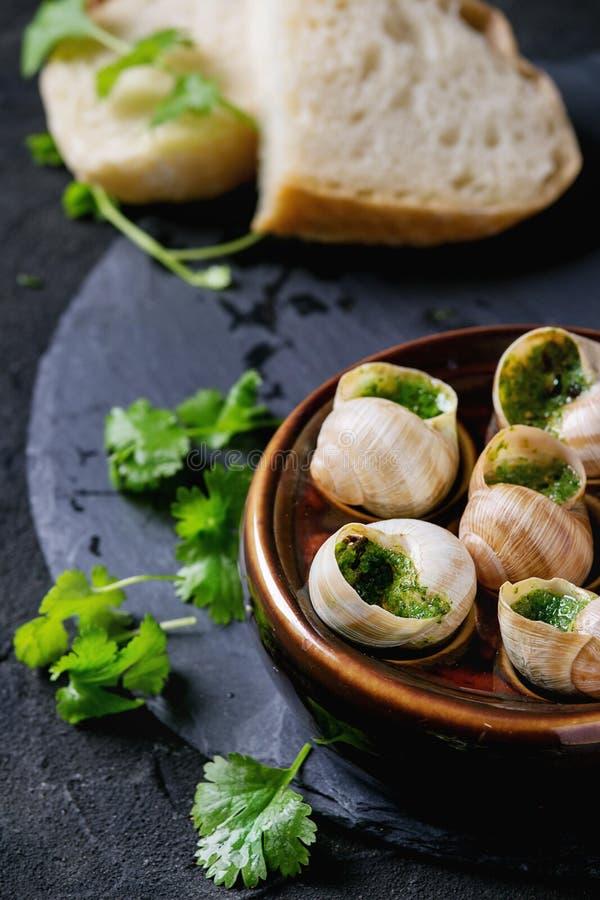 Caracóis prontos para comer de Escargot de Bourgogne fotografia de stock royalty free