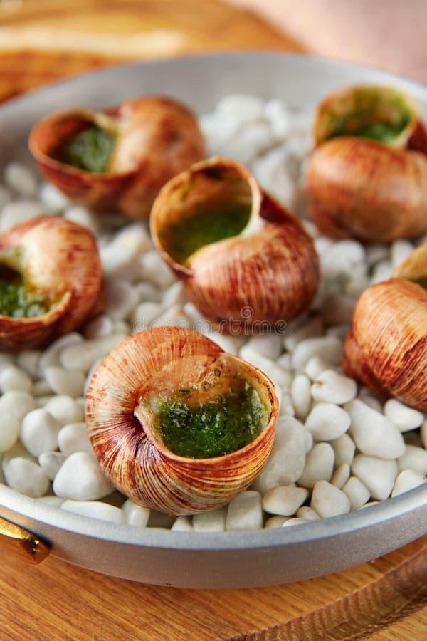Carac?is do escargot com manteiga de ervas do alho imagem de stock royalty free