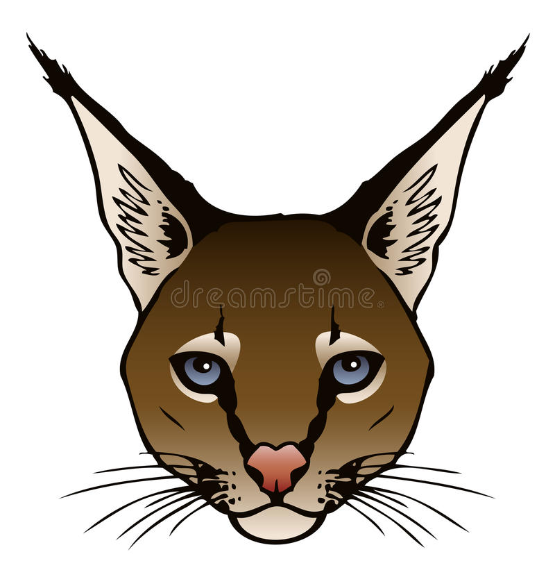 Download Caracal Royalty Free Stock Photos - Image: 29468868