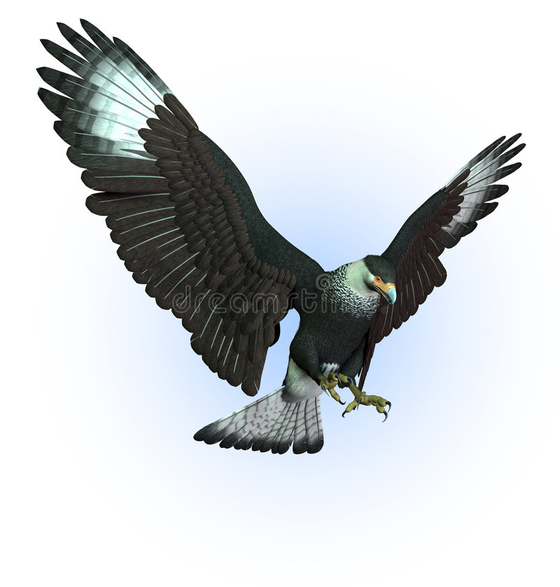 Download CaraCara Vulture Swooping Down - Includes Clipping Path Stock Illustration - Illustration: 225903