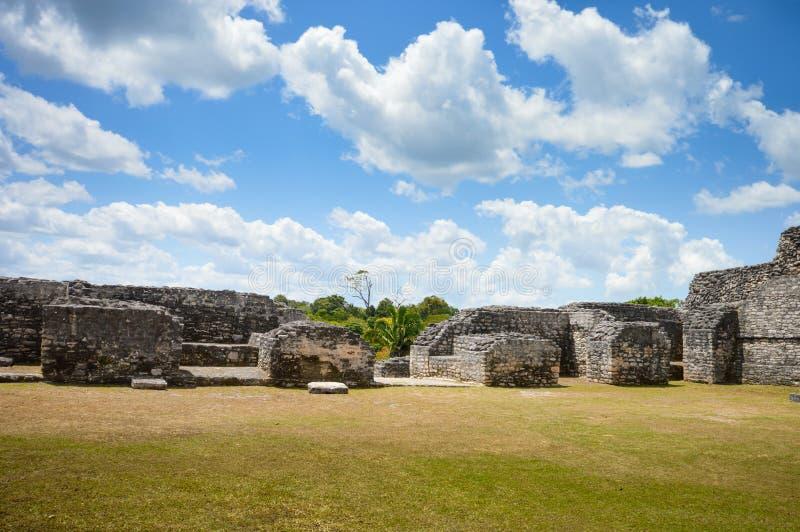 Caracol arkeologisk plats av Mayan civilisation i västra Belize royaltyfria bilder
