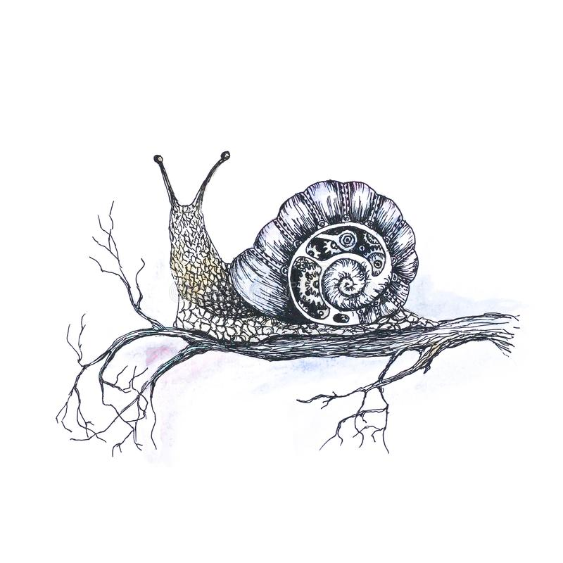 Caracol colorido brillante en una rama de árbol A mano Una acuarela libre illustration